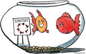 fish-strategy